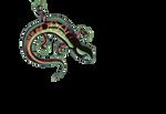 Salamander_DAID