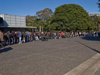 Crowd Stock 001