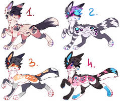 Adopt Set Open by CNR104
