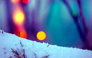 Snow Bokeh by JohnKyo