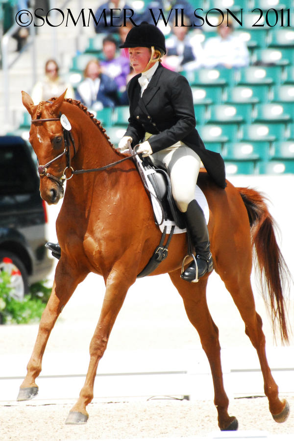 Colleen Rutledge Dressage II by zeeplease
