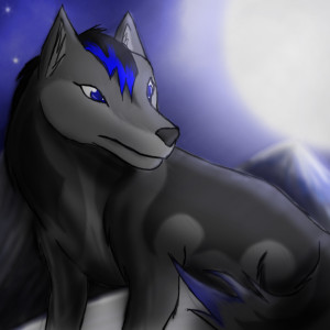 ReticentLoneWolf's Profile Picture