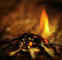 Burning Memories by EleonoreC