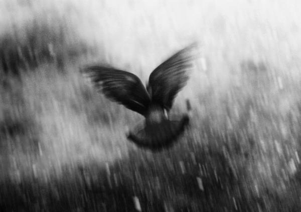 I fly by EleonoreC