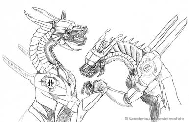 Battle Dragonz by tastelessfate