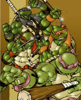 canibus ninja turtles colored