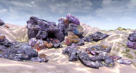 Coral Reef 6