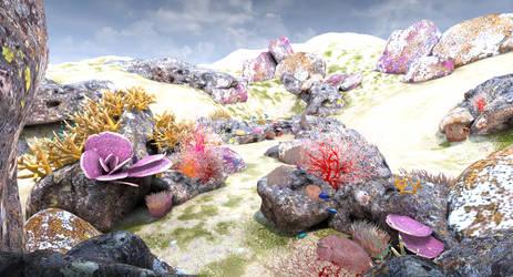 Coral Reef 7