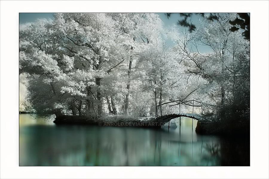 Parc de Martreil I by Anrold