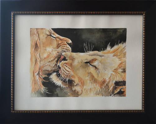 Dad_lions