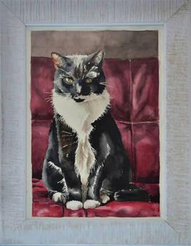 Kat_cat