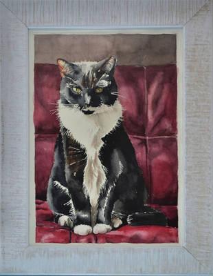 Kat_cat by BlackPinkOrBlue