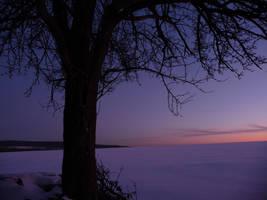 Lighting snow by DarkKaith