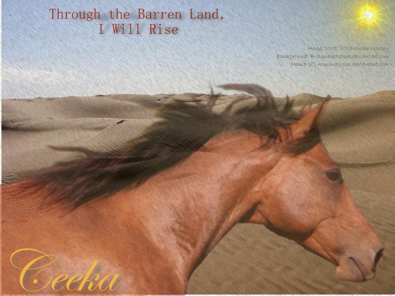 Barren Desert by hornswaggler