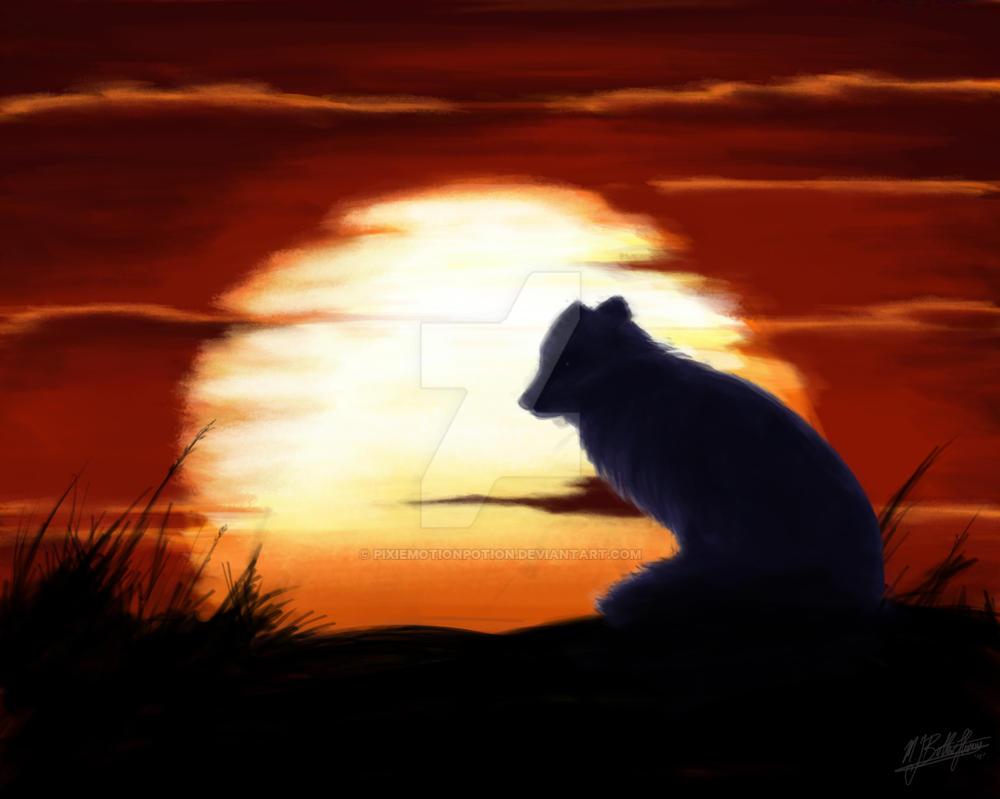 Arctic Fox D Travel Trailer For Sale