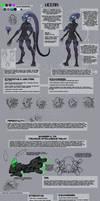 Veera Reference Sheet
