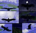 Virtual Raven by stargliderx