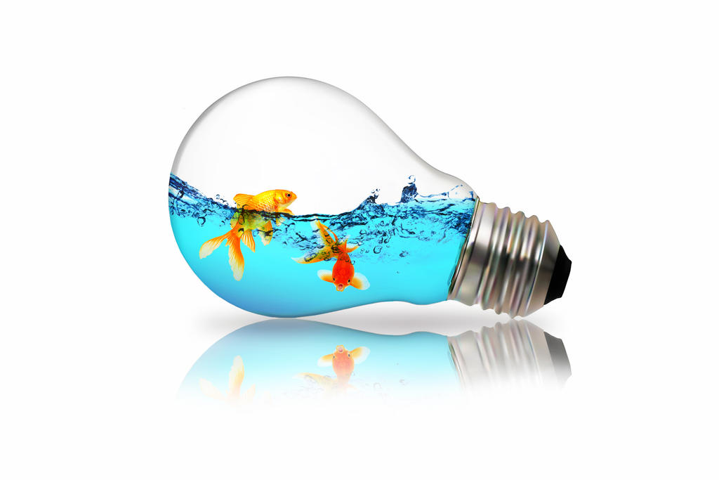 light bulb fish   Decoratingspecial.com