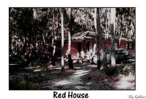 Red House- The Woods.