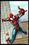 Spiderman 2013 Colors