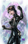 Catwoman Colors
