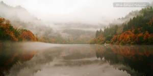 Autumn Umpqua