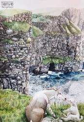 Ireland - Cliffs of Moher by RaggedVixen