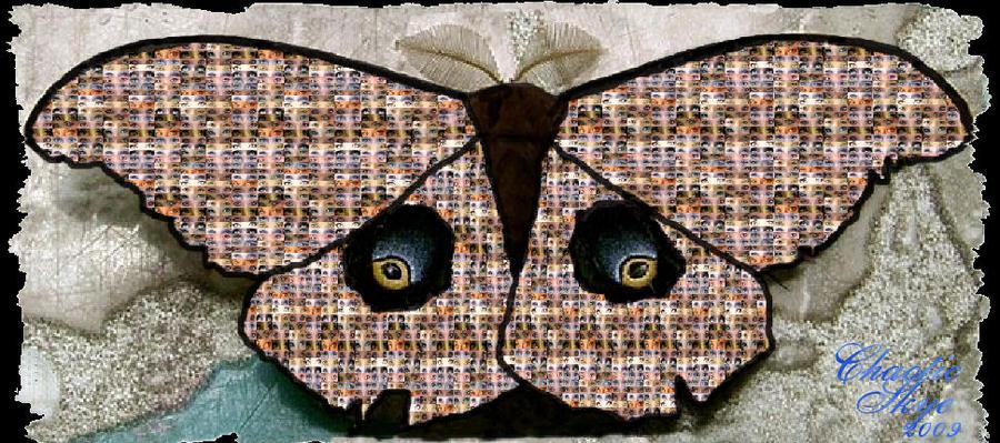 Skye Eyes by ChaoticSkye