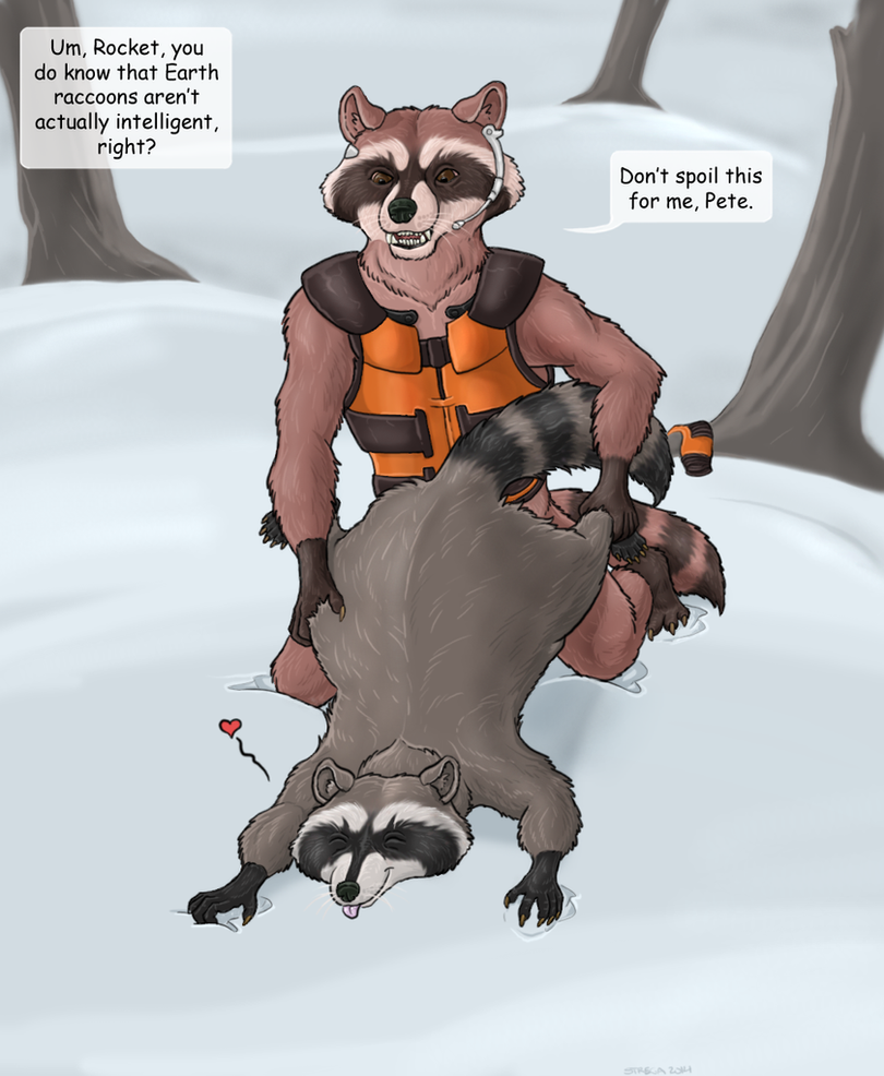 Rocket and the raccoon by Greedywoozle