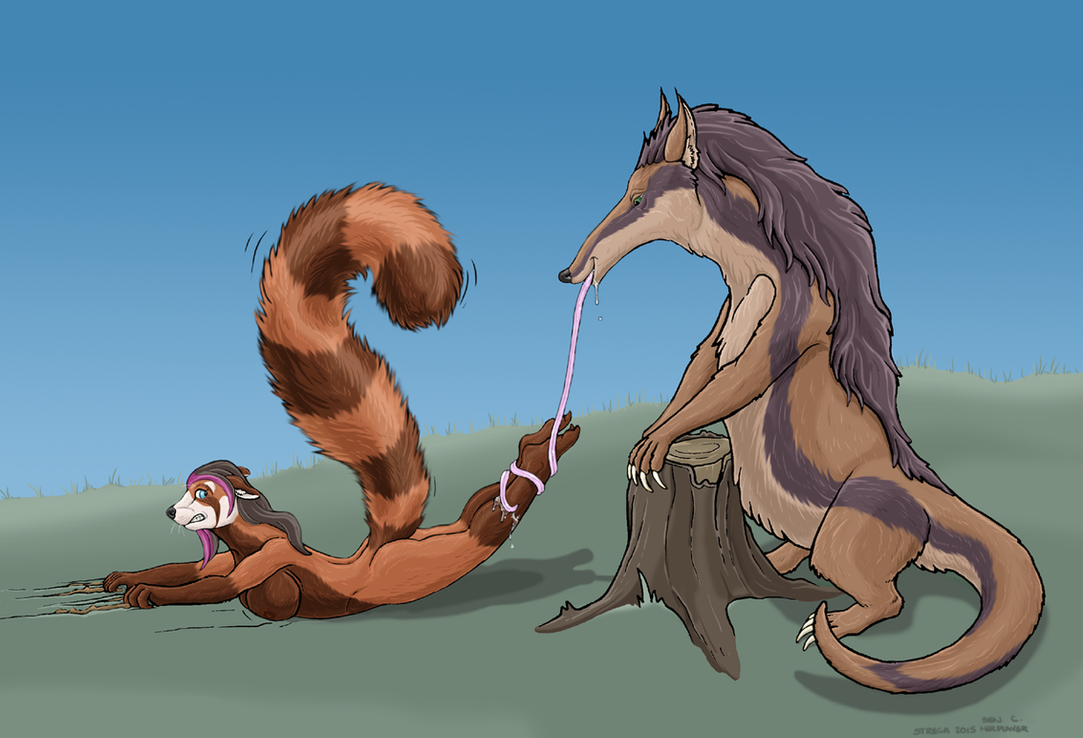 Anteater and red panda (color) by Greedywoozle