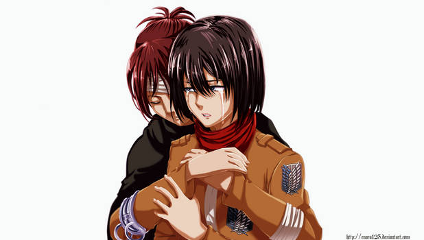 Colored 296_Hanji and Mikasa
