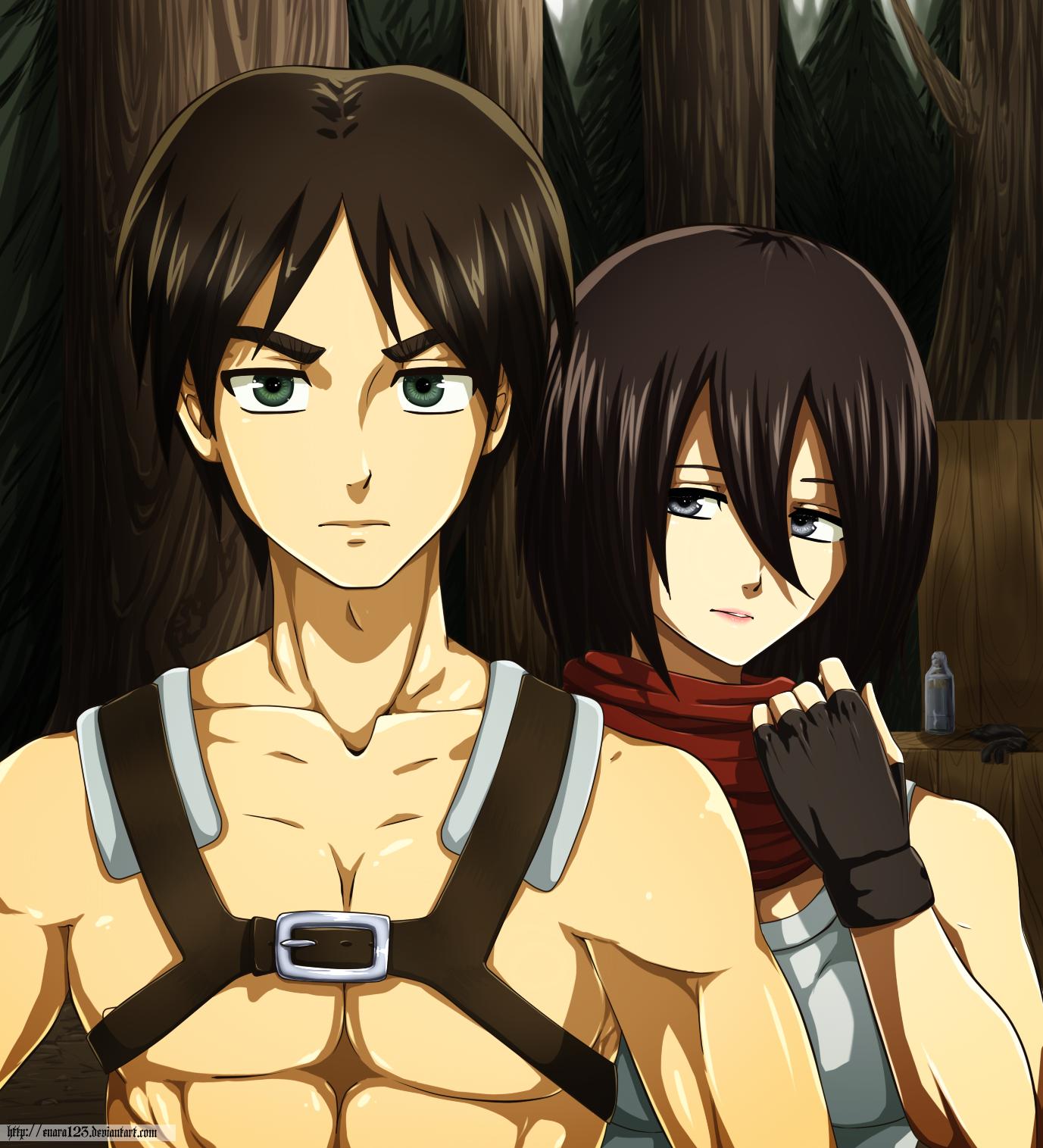 Mikasa And Eren Fan Art