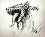 A dragons Head