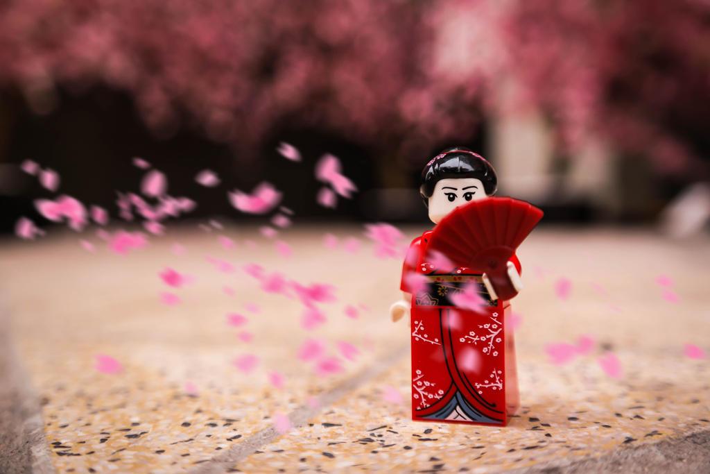 Sakura by jokerjester-campos