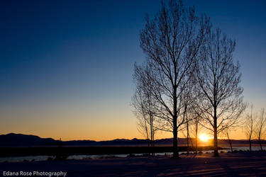 Snow Sunset by LadyEdana