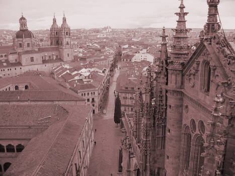 Salamanca from the air