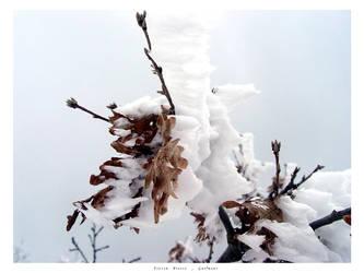 Frozen breeze by Guilmour