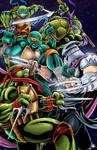 Teenage Mutant Ninja Turtles - Turtles vs Shredder