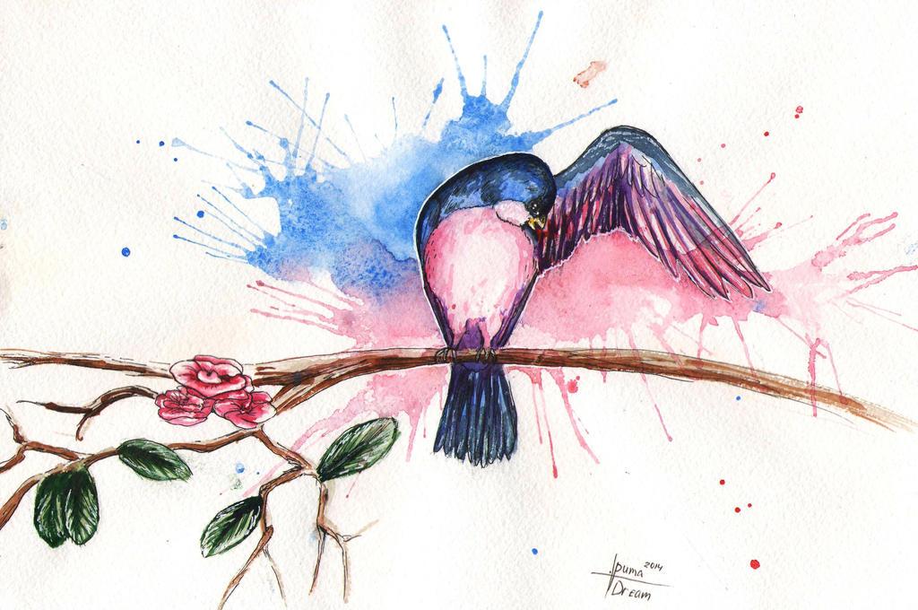 colourful bird by puma290798
