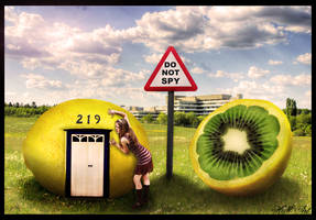Lemon Plains by drherbey