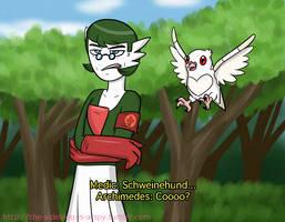 TF2/Pokemon Crossover Garde-Medic and Archi-Pidove
