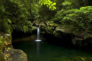 Paradise by OakBark