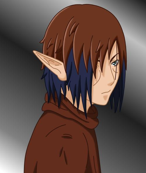SSJCyberSonic's Profile Picture
