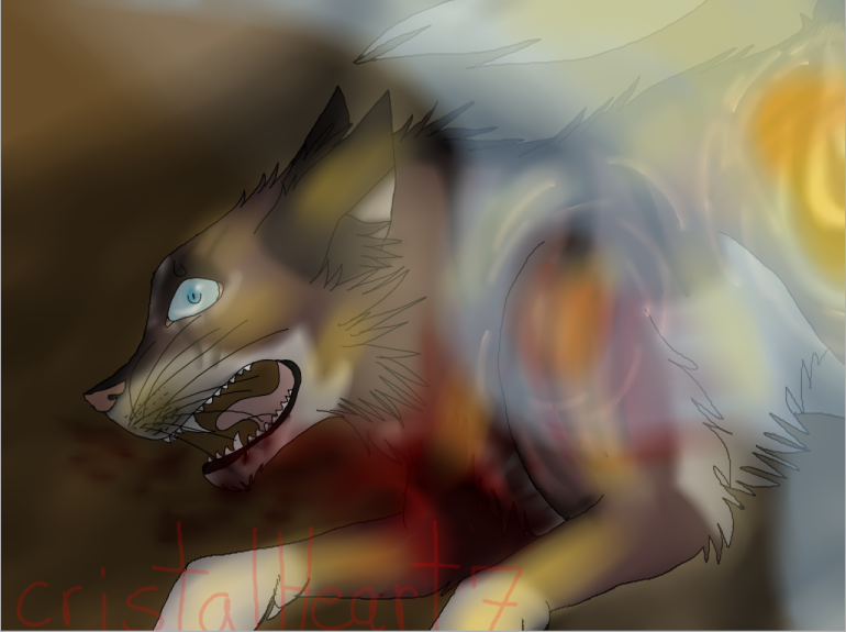 HawkFrost's death by cristalheart7