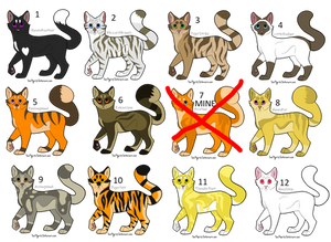 Cheap warrior cats adoptables