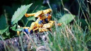 Transformers Masterpiece - MP-34 Cheetor 02