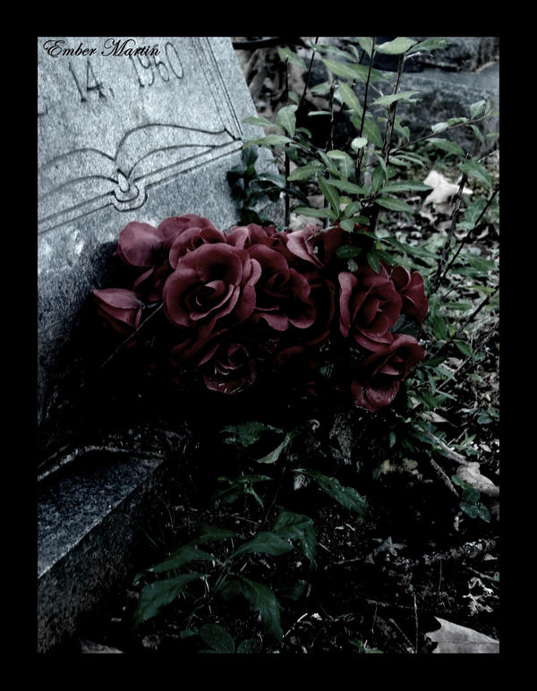 Rose on the grave by Phantom-shilouette