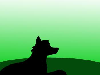 Wolfy by TinaKa