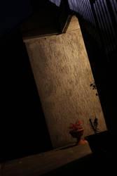Moonlight, hidden though by elainoelloc