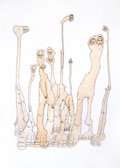 coffee drawing - long necks by macen
